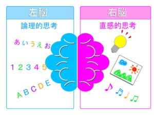 右脳と左脳の関係 自律神経バランスとパニック障害