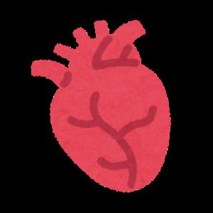 副腎皮質ホルモン(コルチゾール)が分泌されるため心臓がバクバクする