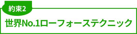 世界No.1ローフォーステクニック